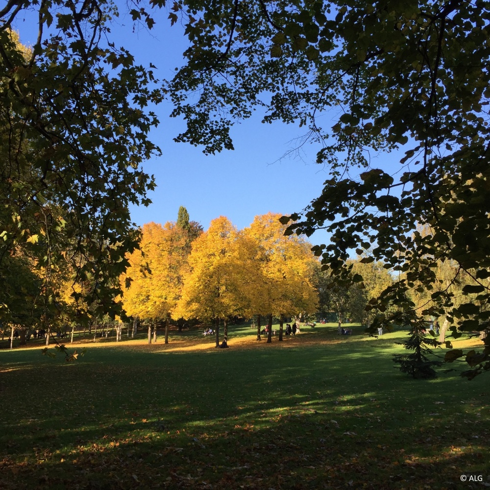 hyde-park-autumn-london