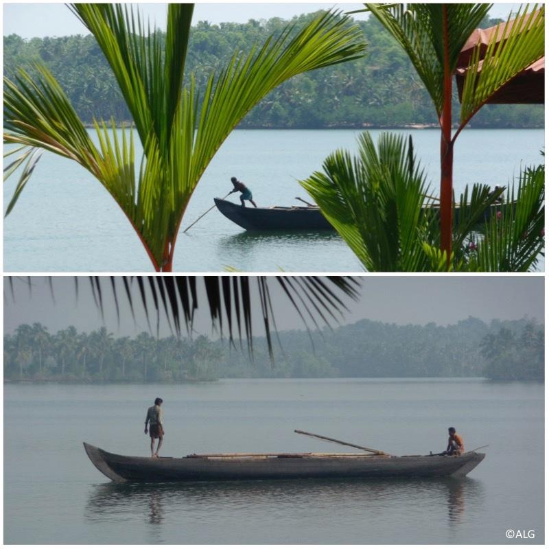 backwaters-kerala-inde